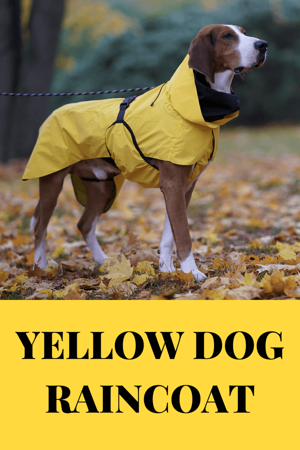 dog raincoat yellow large